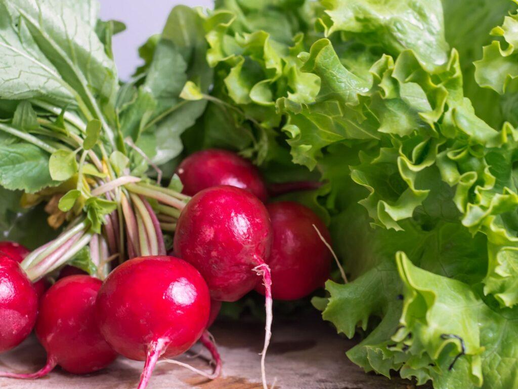 овощи органик
